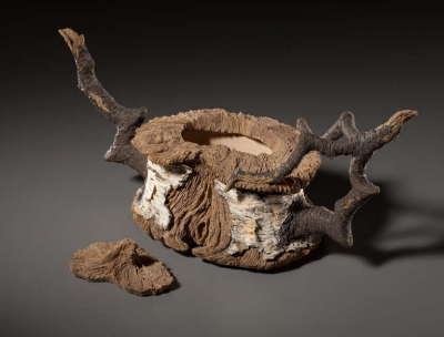 SEE017_Serritella_Eric_Birch_Stump_Teapot_Black_Branches_002_l.png